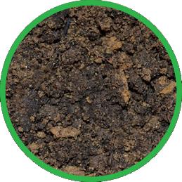 Circle_soil
